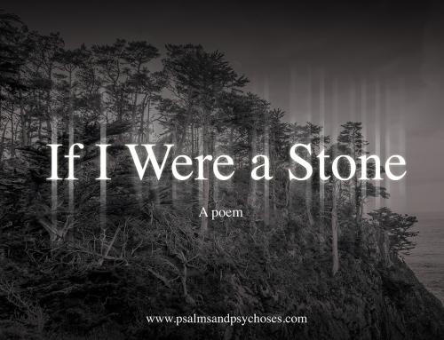 If I Were a Stone